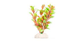 Artificial Aquarium Plants Iso...