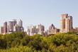 A rare view of NYC skyline from central park