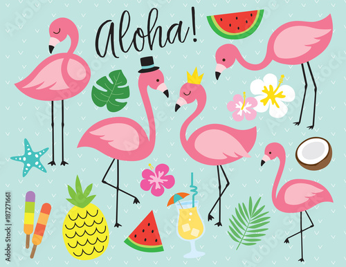 Fotografie, Obraz Cute flamingo with tropical summer vector illustration graphic elements such as pineapple, watermelon, hibiscus, coconut, pina colada, etc