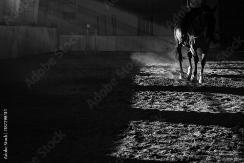 Details of a horse training with sun rays and dust inside a horseback riding sch Fototapet