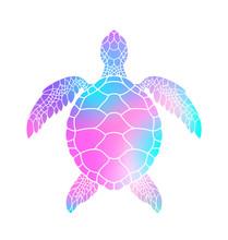 Colorful Turtle. Vector Illust...
