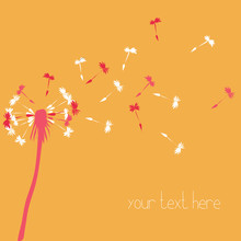 White And Pink Silhouette Of Dandelion Blowing. Vcetor Illustration On Light Orange Background