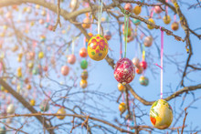 Сolourful Easter Eggs On A Tree Branch