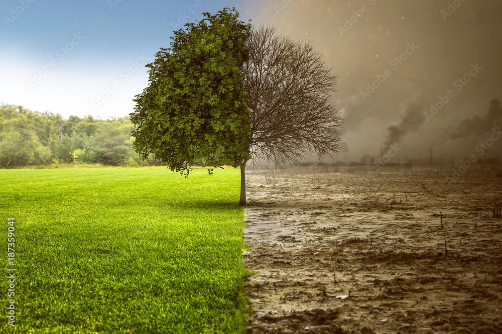 Fototapeta Umweltzerstörung