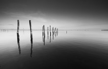 Calm Scene With Reflection Of Wooden Pillars In Black And White At A Coast In Pitas, Sabah, Borneo, East Malaysia