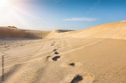 Fototapeta Kroki na pustyni piasku w Katarze, w pobliżu stolicy Doha