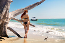 Attractive Bikini Woman With Sexy Body Back View Standing At Tropical Sandy Beach Of Lovers Key State Park, Vacation Destination In Fort Myers Florida, Holiday Boat On Turquoise Blue Sea On Background