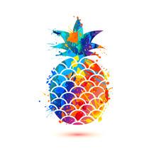Pineapple Icon. Splash Paint S...