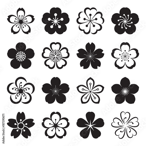 Sakura icons. Collection of 16 Ume Japanese cherry blossom symbols isolated on a white background. Vector illustration Wall mural