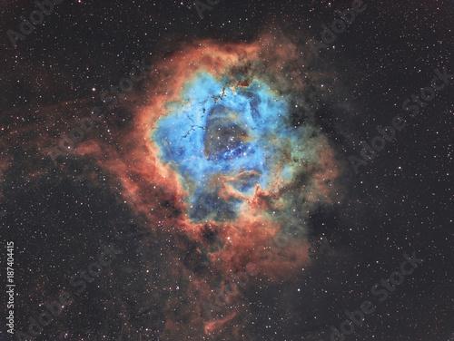 Keuken foto achterwand Heelal The Rosette nebula in widefield in Hubble Space telescope palette