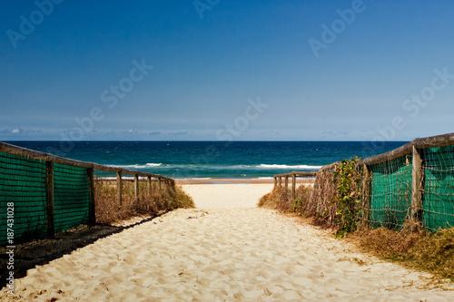 In de dag Australië Path to the Beach in Australia