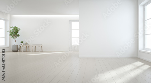 Indoor plant on wooden floor with white wall background in large room at modern new house for big family, Vintage window and door of empty hall or natural light studio - Home interior 3d illustration