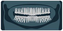 Panoramic Dental X-Ray. 32 Hea...