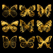 Shiny Golden Butterflies With ...