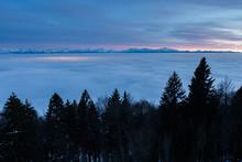 La Mer De Brouillard De Nuit D...