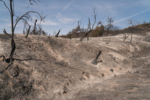 Burned Hillsides In Aftermath Of Thomas Fire In Southern California