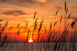 Fototapeta Sunset - Chesapeake Bay Sunrise
