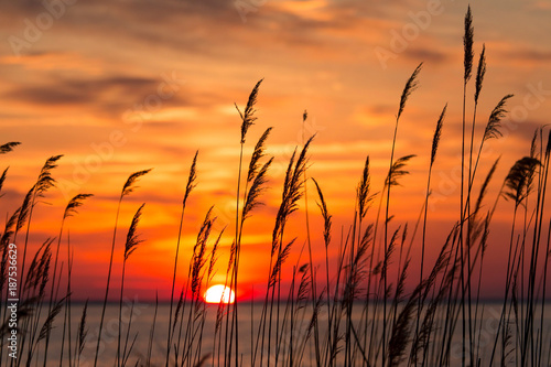 Deurstickers Zonsondergang Chesapeake Bay Sunrise