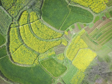 Aerial Photography Bird Eye-view Of Land Farmland And Nature Lan