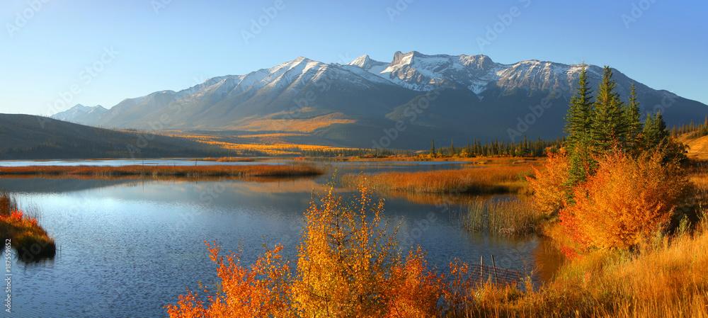 Fototapeta Talbot lake in Jasper national park