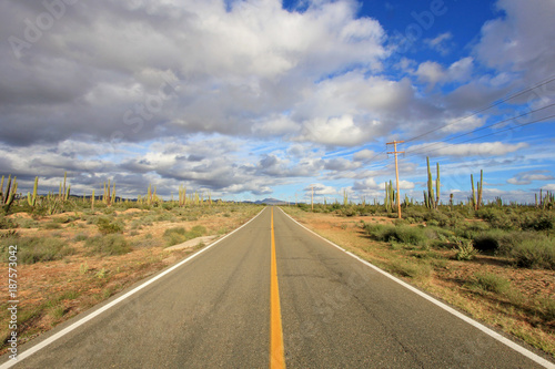 Classic panorama view of an endless straight road running through a Large Elepha Canvas Print