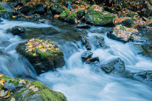 River Running Over Mossy Rocks In Forest