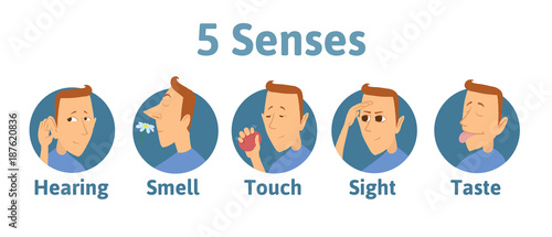 Foto  Set of five human senses icon: hearing, smell, touch, vision, taste