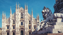Lion And Milan Cathedral In Mi...