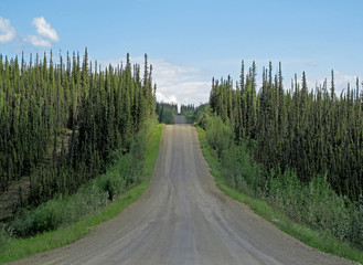 Fototapeta na wymiar Endless Dalton Highway with mountains, leading from Fairbanks to Prudhoe Bay, northern Alaska, USA