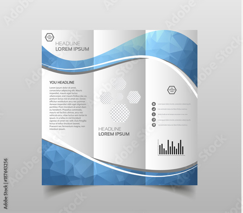 vector of tri fold brochure design templates with modern polygonal