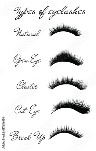 97eb1a674fa Hand-drawn woman's various type set of full lashes Typography Square ...