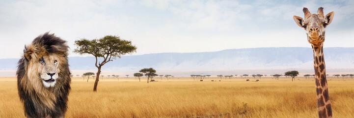 Africa Safari Web Header Lion and Giraffe