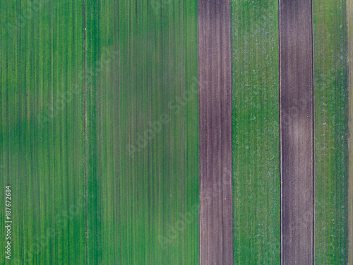 Foto op Plexiglas Groene Abstract image of farmland