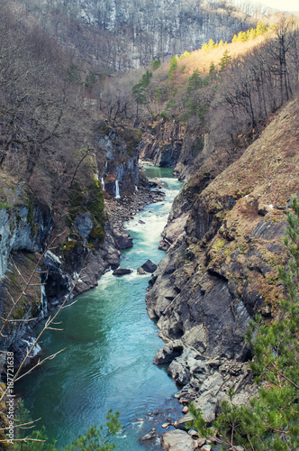 Fotobehang Grijs Landscape with mountain river and forest