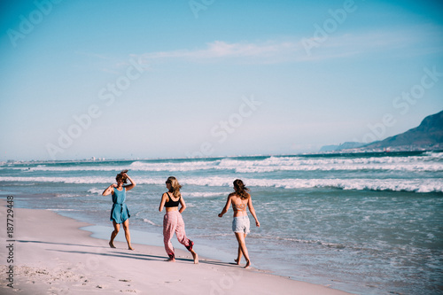 Group of younf adult friends walking on the beach