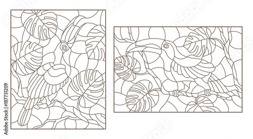 Photo Set contour illustrations with birds toucans on branches of a tropical tree , a