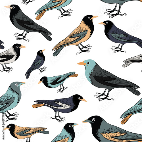 Collection of various birds seamless pattern Canvas Print