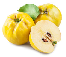 Apple-quince And Piece Of Quince. File Contains Clipping Path.