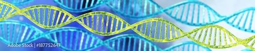 Fotografía  DNA helix, RNA
