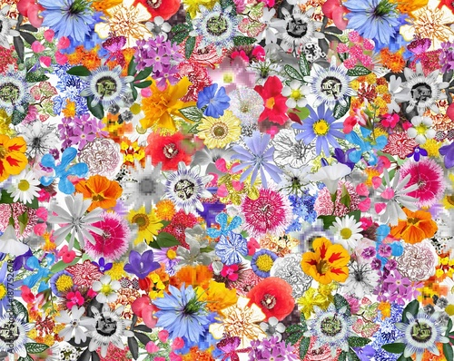 Colorful Background made with Mixed  Flowers - 187752679