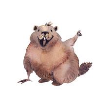 Happy Groundhog Day - Hand Dra...