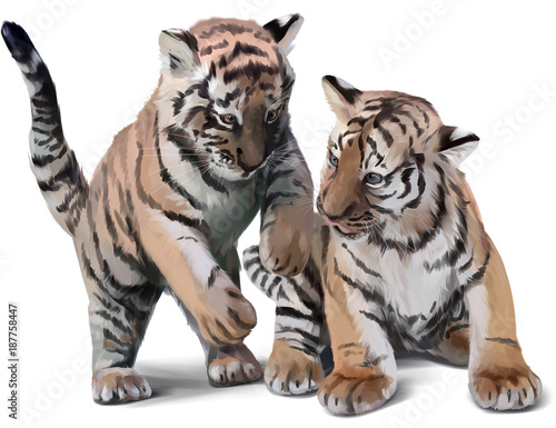 dwa-male-tygrysy-bawiace-sie-akwarela