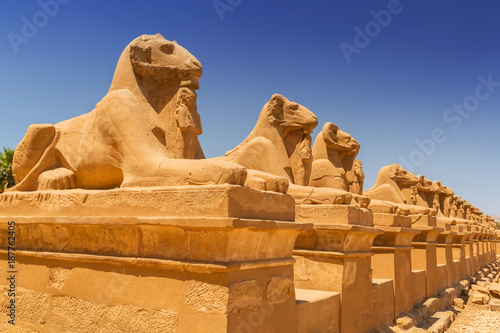 Photo Stands Egypt Ancient architecture of Karnak temple in Luxor, Egypt