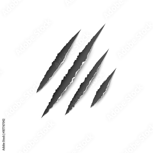 Fotografia Claws paw scratches isolated vector on white background