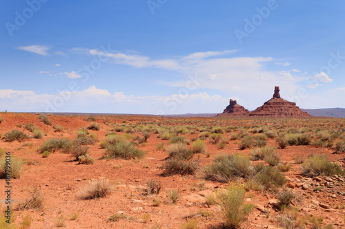 Spoed Foto op Canvas Koraal Valley of the Gods view