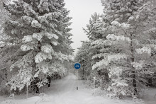Snow-covered Bicycle Road In W...