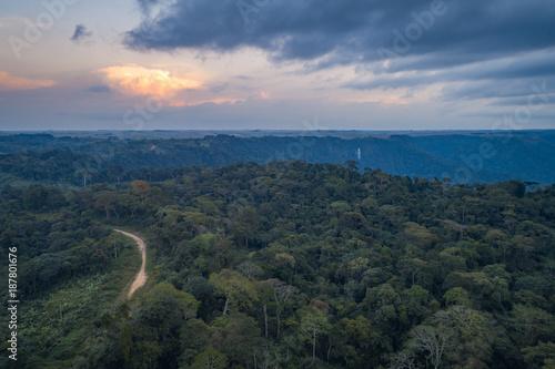 Foto op Canvas Weg in bos Caminho numa floresta tropical de escarpa na província do Záire, Angola