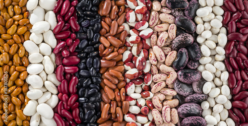 A set of various kidney beans.