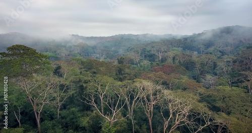 A floresta húmida tropical dos Dembos em Angola vista do ar com Drone