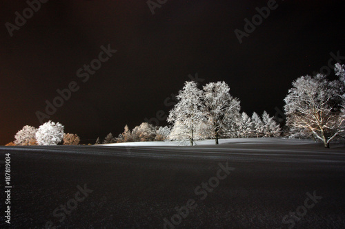 Fotografie, Obraz  夜の雪原